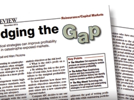 "Featured article in AM Best November 2013 – ""Bridging the Gap"""